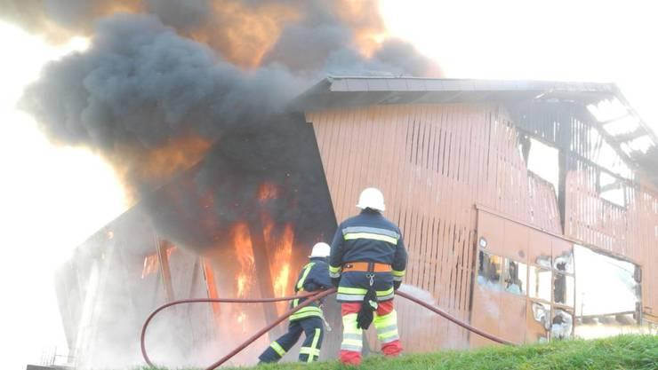 Die Feuerwehr kämpfte gegen die Flammen in dem Stall in Vorderthal. Einige Kühe und Rinder verendeten in dem Feuer. Die geretteten Tiere mussten wegen Rauchgasvergiftung notgeschlachtet werden.