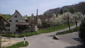 Einige Baselbieter Gemeinden wählen im Juni ihre Regierung. So auch Nusshof (Bild).