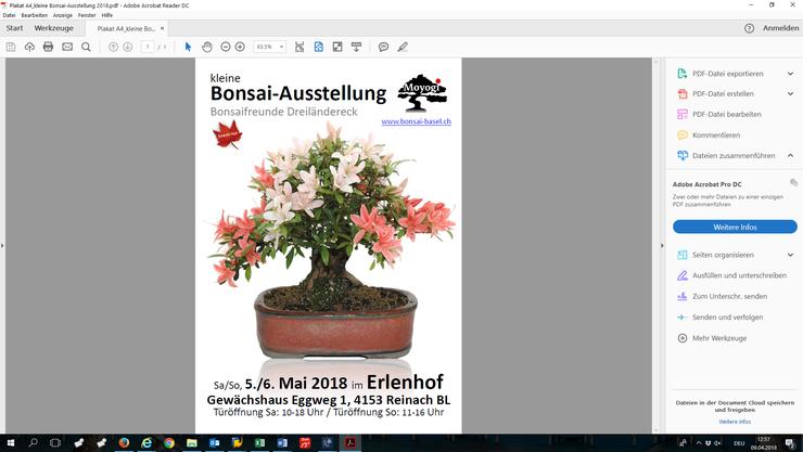 Plakat Bonsai-Ausstellung 2018