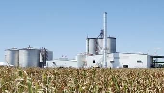 Eine Ethanol-Fabrik hinter einem Maisfeld in Missouri (Archiv)