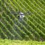 Der Ständerat will weniger Pestizide im Grundwasser, verzichtet jedoch auf eine Lenkungsabgabe.