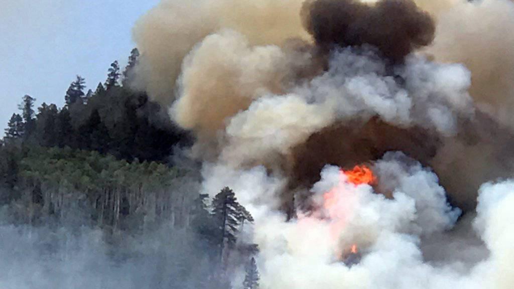 Heftige Waldbrände toben im US-Bundesstaat Colorado.