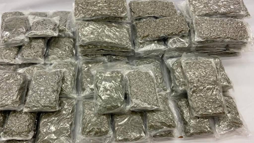 Über 100 Kilogramm Marihuana sichergestellt