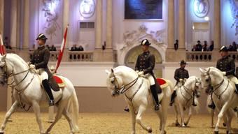 Die Reitkunst und Lipizzanerzucht der Spanischen Hofreitschule in Wien ist in das Verzeichnis für das immaterielle Kulturerbe der UNESCO aufgenommen worden. (Archiv)