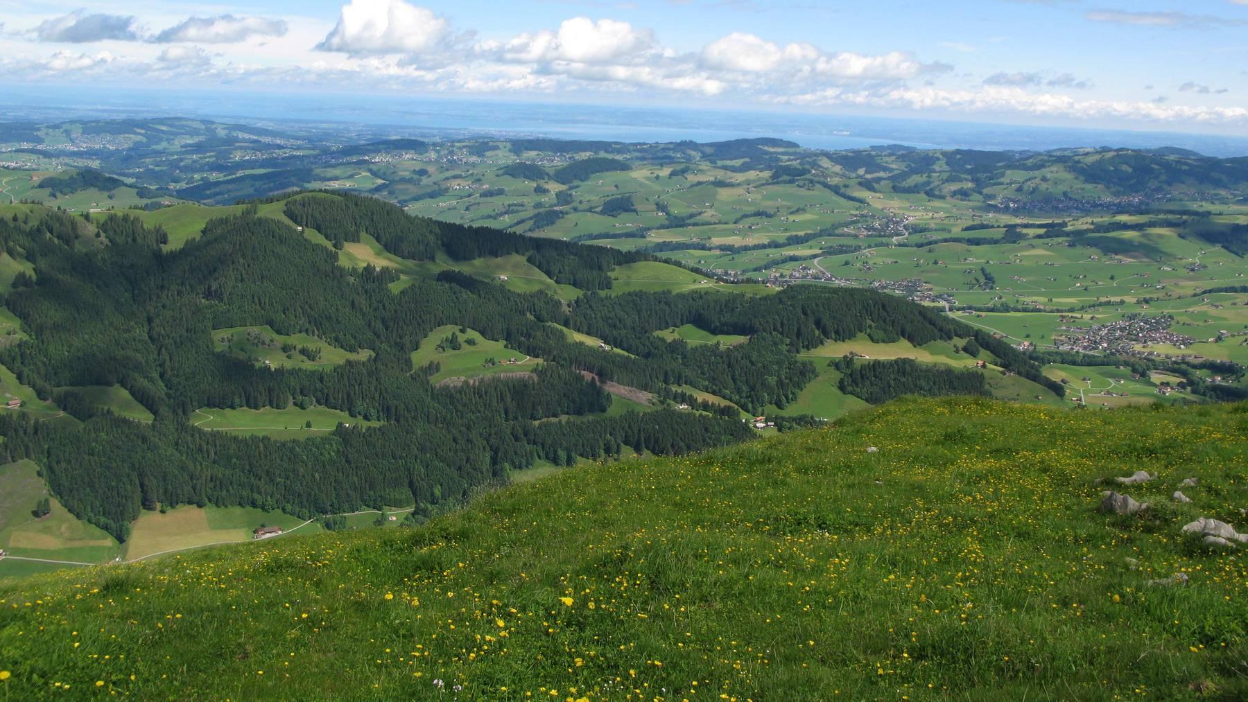 ebenalp_alpstein_landschaft