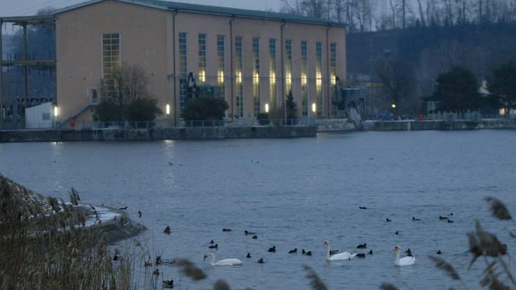 Der Naturschutzverein Aare-Rhein möchte, dass Perspektiven für die Zukunft des Klingnauer Stausees in die «Vision Zurzibiet» aufgenommen werden. Walter Schwager.