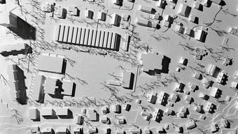 Siegerprojekt: Der geplante Längsbau und Ersatz für das Schulhaus Dohlenzelg ist zweigeschossig.