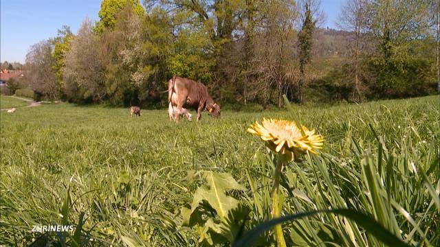 Schweizer wollen keine grüne Lebensmittelpolitik