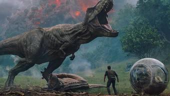 Selbst vom Bildrahmen nicht zu bändigen: Der Tyrannosaurus Rex treibt auch in «Jurassic World: Fallen Kingdom» sein Unwesen. Genau wie der Vulkan in seinem Rücken.