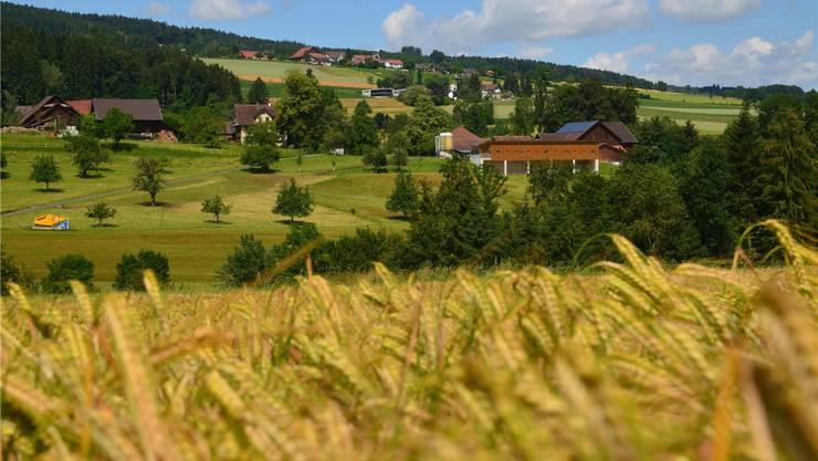 Unten Isenbergschwil, oben Geltwil, in der Mitte das Schulhaus. Die Fusion zu einer Gemeinde erfolgte am 26. Juni 1816. ES