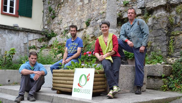 Nicola Küng, Christian Michel, Gertrud Häseli und Patrick Gross mit der Gemüsekiste in der Halde (v.l.).NAM