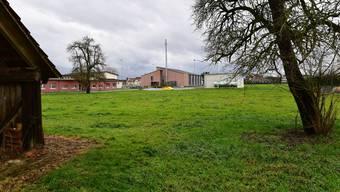Dieses an das Schulhausareal angrenzende Landstück möchte die Gemeinde erwerben.