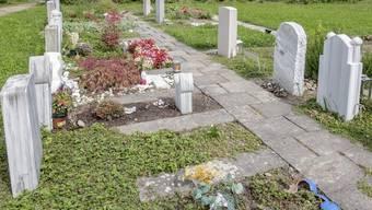 Rundgang auf dem Friedhof Hörnli mit der Freien Journalistin Nathalie Baumann und Frau Bandi, Leiterin Friedhöfe Basel-Stadt. Viele Fotos des Friedhofs für eine mögliche Doppelseite. Das Muslimische Grabfeld