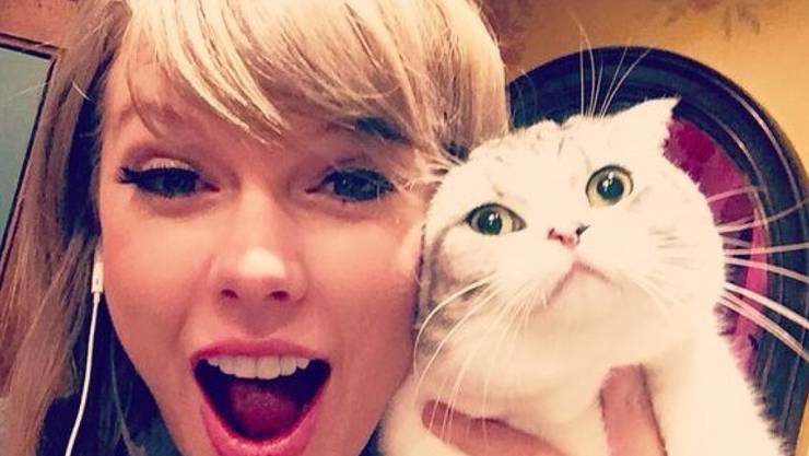 """Taylor Swift mit Meredith, einer ihrer """"cool cats"""" (Twitter)."""