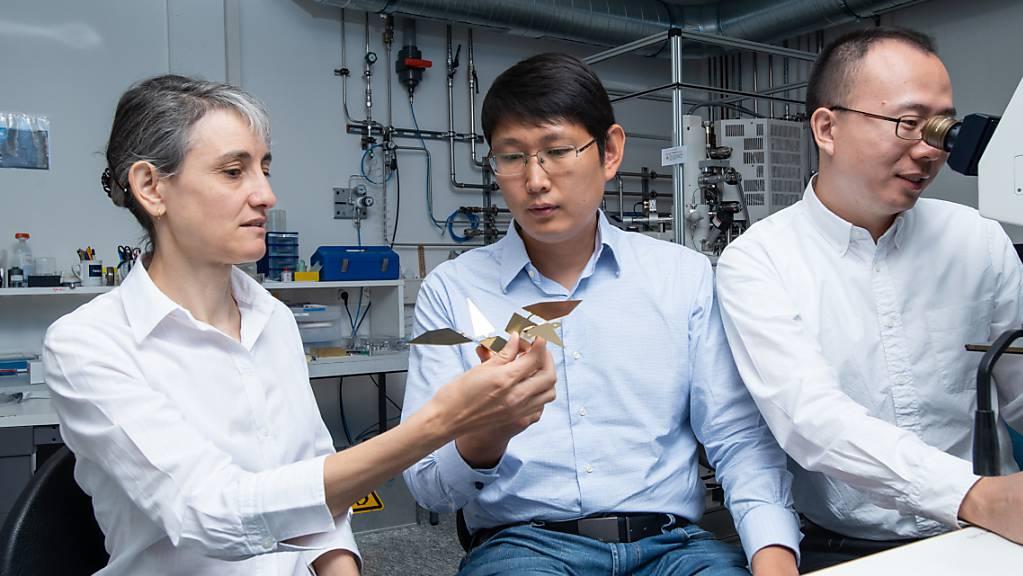 Laura Heyderman und Tian-Yun Huang (Mitte) betrachten ein vergrössertes Modell des Mikroroboters, der an einen Origami-Vogel erinnert. Jizhai Cui (rechts) betrachtet den echten Mikroroboter unter einem Mikroskop.