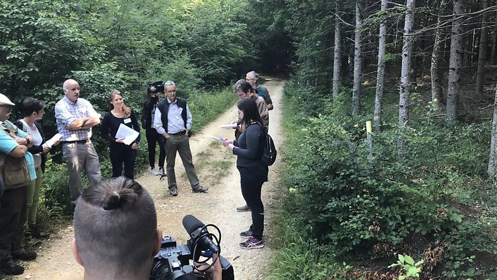 Projektleiterin Isabelle Glanzmann (oben, mit Unterlagen) erläutert vor Medien im Gelterkinder Wald den Nutzen der Ameisen und derer Inventarisierung. Rechts mit gelbem Pfosten markiert ist ein kleiner Ameisenhaufen unter einem Jungbaum.