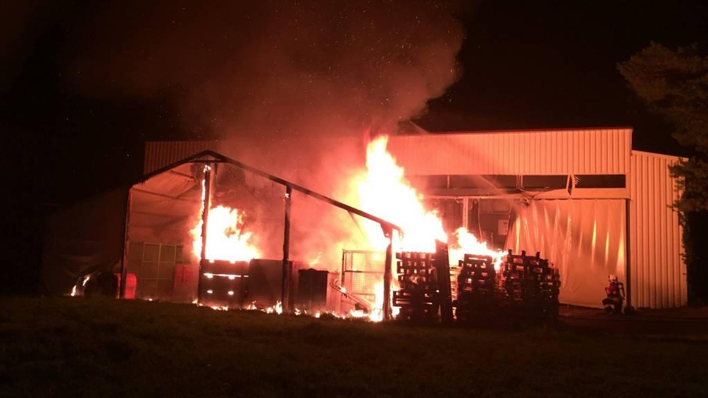 Holzpaletten und Zelt gebrannt