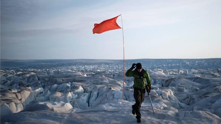 Grönland ist das neuste Ziel von US-Präsident Donald Trump. Bild: Felipe Dana/AP (Helheim, 16. August 2019)