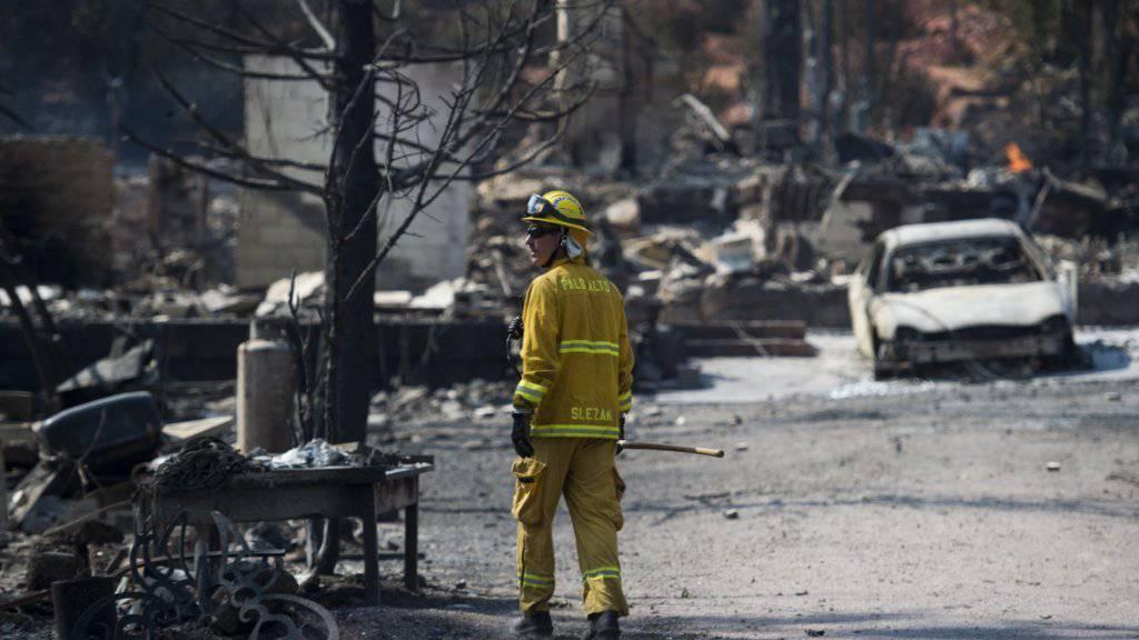 In Kalifornien wüten Wald- und Buschbrände: Ein Feuerwehrmann inspiziert den Schaden nach dem Durchzug der Flammenwalze.