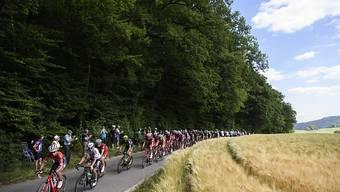 Die Tour de Suisse 2018 rollt primär durch die Deutschschweiz
