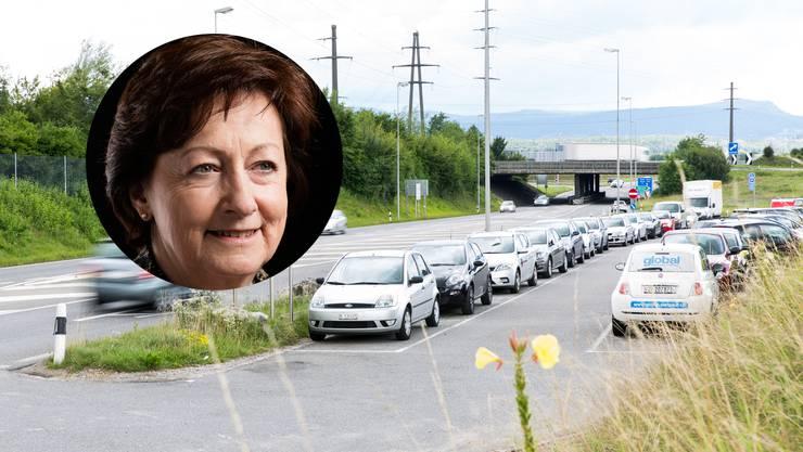 Der Bundesrat beantragt die Ablehnung der  Motion  von Sylvia Flückiger.