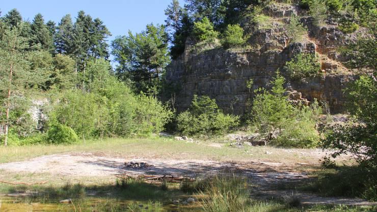 In diesem Steinbruch stürzte die 11-Jährige in den Tod.
