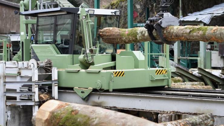 Rund 50 Prozent der Erntemenge wird in der Schweiz als Stammholz in die Sägereien geliefert und zu Bauholz oder Möbeln verarbeitet. (Archivbild)