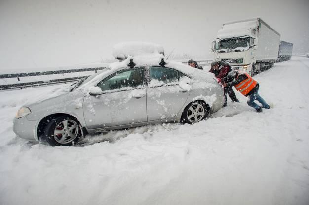Das Tessin versinkt im Schnee-Chaos. (7)
