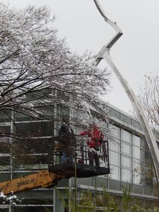 Schnee und Kälte beeinflussten die Abbauarbeiten nicht, sagt Emch.