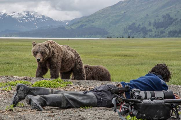 Dabei enstehen solch wunderschöne Bären-Fotos. (ZVG)