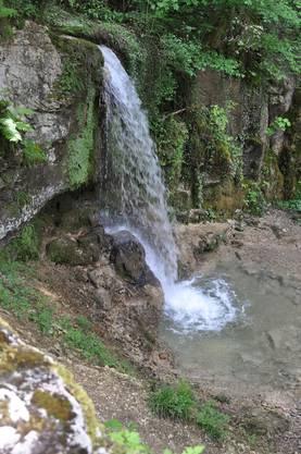 Der höchste Wasserfall des Aargaus – in Linn.