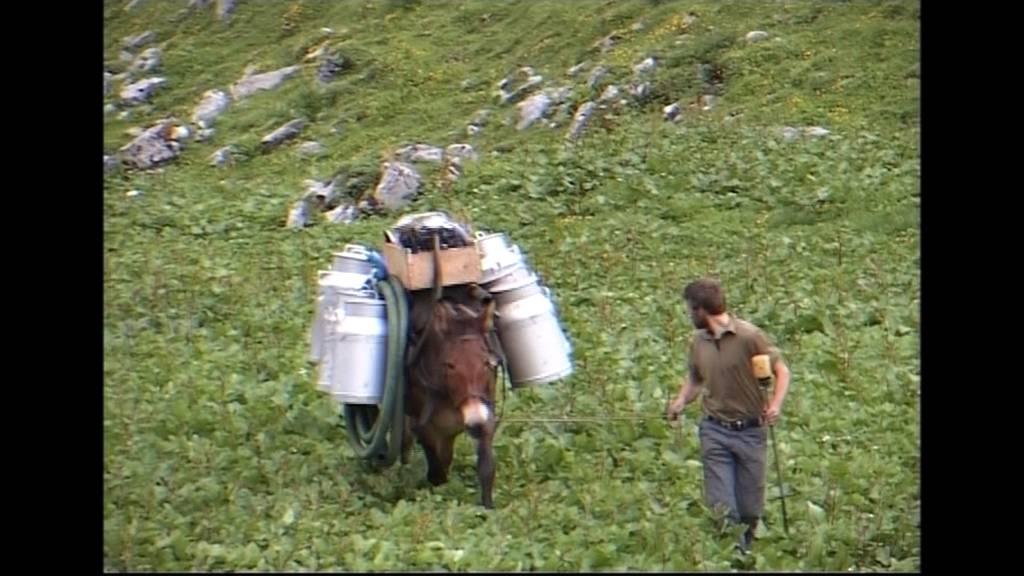 TeleZüri ziähts uf d'Alp: Teil 4 (2009)