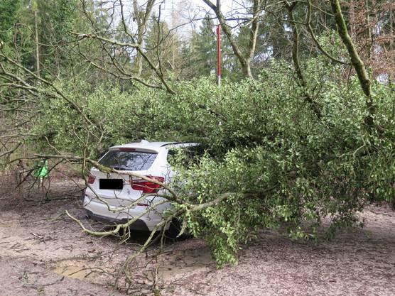 Beide Wagen wurden stark beschädigt.