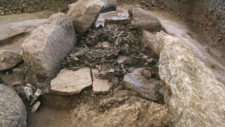 Schicht mit menschlichen Überresten in ihrer ursprünglichen Lage im Dolmen von Oberbipp.