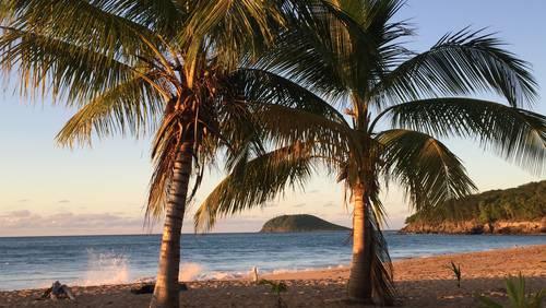 """Rund um die Inseln gibt es zahlreiche Strände mit Postkartenidylle. Tipps: """"Grande Anse"""" in Deshaies, """"Plage de Saint Felix"""" in Gosier oder """"La Perle"""" in Deshaies."""