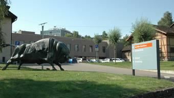 Tierspital Zürich, Vetsuisse-Fakultät der Universität Zürich. (Symbolbild)