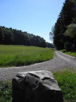 Grenzstein bei Weiningen.