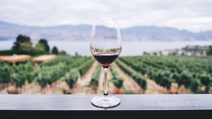 Wein kaufen in Zürich