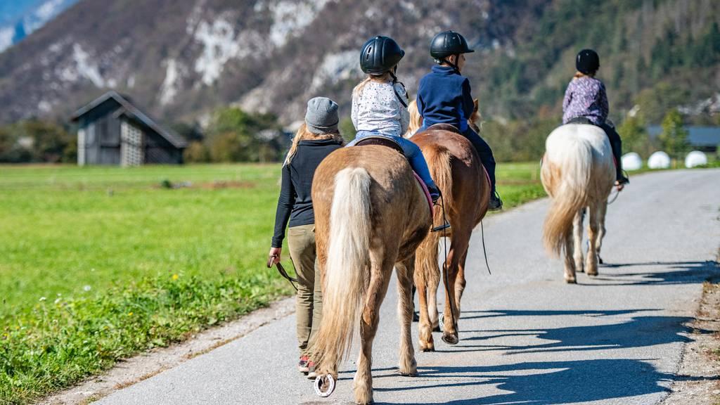 «Pferdemist gehört nicht auf die Strasse» – Reiter müssen ihn entfernen