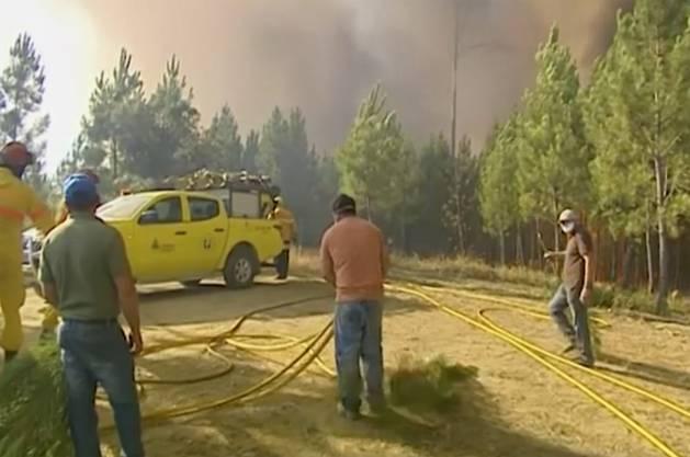 Das Feuer brach am Samstag 200 Kilomter nordöstlich von Lissabon aus