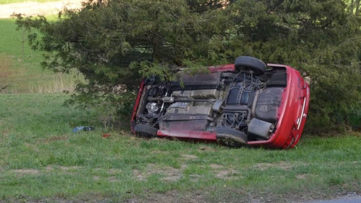 Das Auto kam von der Strasse ab und landete auf der rechten Seite in der Wiese.