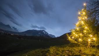 in Weihnachtsbaum strahlt am Donnerstag, 19. Dezember 2018, am Fusse des Stanserhorns, oberhalb von Stans im Kanton Nidwalden.