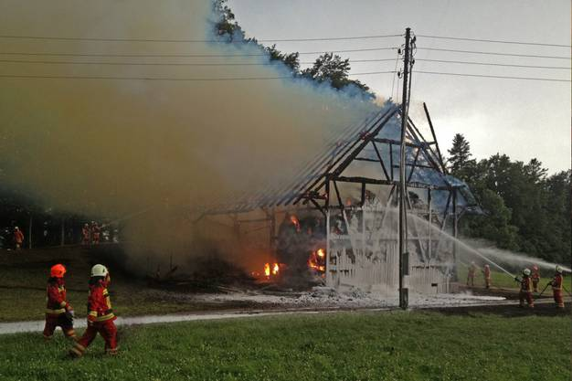 Die Feuerwehr versucht, dem Feuer Herr zu werden.