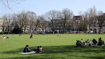 Basels Stadtbild wird von rund 25'000 Bäumen aufgewertet, so etwa im Schützenmattpark.