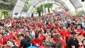 So soll es auch beim Public-Viewing der Handball-EM aussehen.