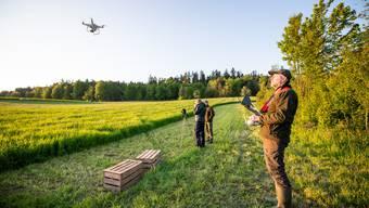 Drohnen-Suchflug zut Rettung von Rehkitzen in Nennigkofen