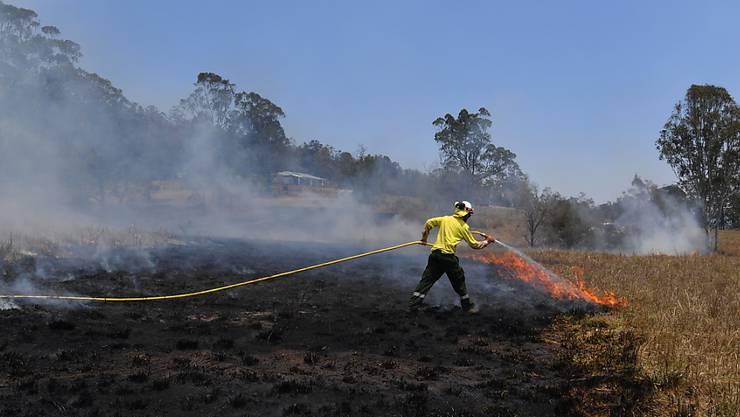 Die Buschbrände in Australien gehen laut Behörden teils auf Brandstiftung zurück.