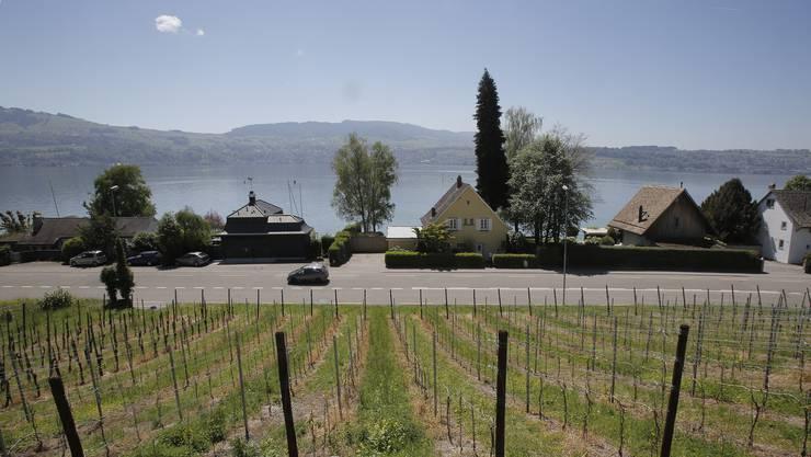 An der Seestrasse, zwischen Bahn und See, muss so gebaut und bepflanzt werden, dass der See immer wieder sichtbar ist, wie auf dem Bild bei der Mosti Stäfa.