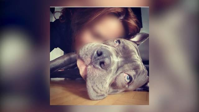 Halterin von entführtem Hund spricht