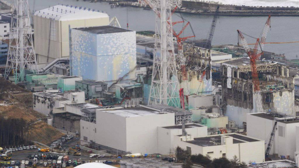Am 11. März 2011 war es in Folge eines schweren Erdbebens und Tsunamis im japanischen Atomkraftwerk Fukushima Daiichi zu Kernschmelzen gekommen. (Archivbild)